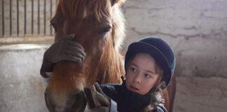 Kto potrafi zorganizować porządny obóz konny